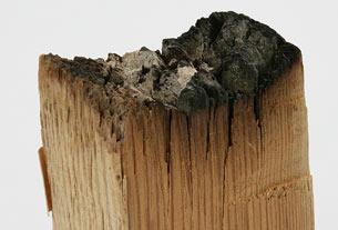 Une pièce de bois de la Maison Blanche