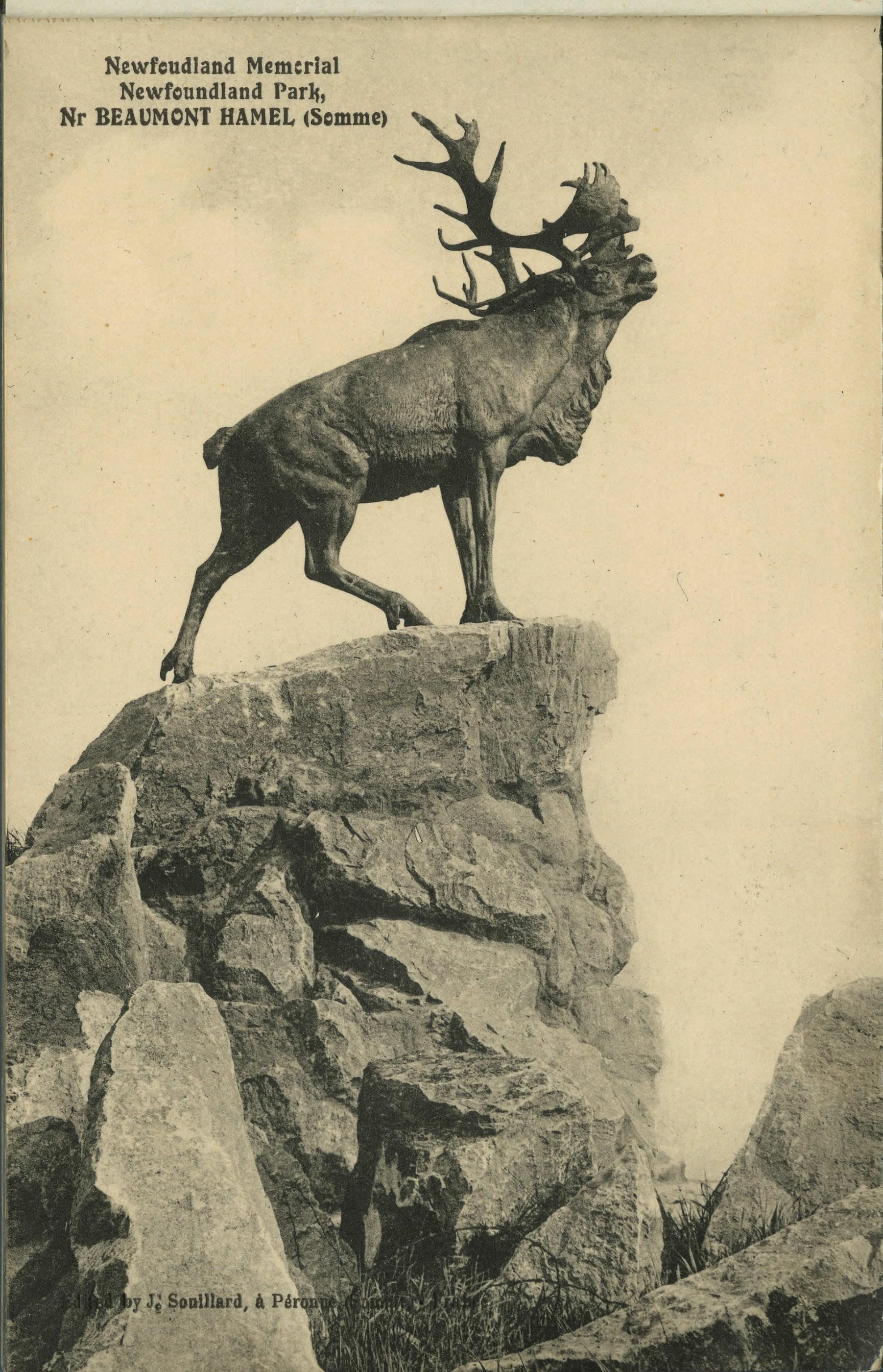 Le caribou de Beaumont-Hamel