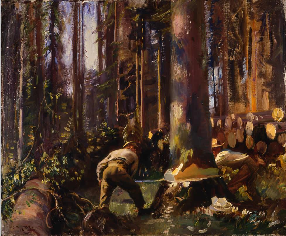 Abattage d'un arbre dans les Vosges