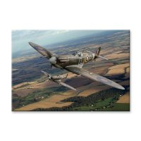 Spitfire Plane Canvas Print