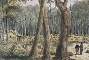 Ferme établie dans une forêt près de Chatham, 1838