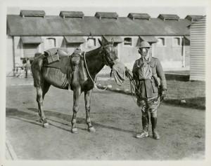 Protection des soldats et des chevaux