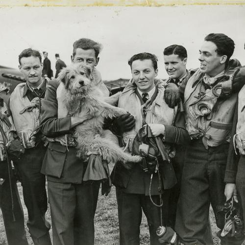 Eight membres de l'Aviation, portant tous des gilets de sauvetage, posent avec leur mascotte, un chien.