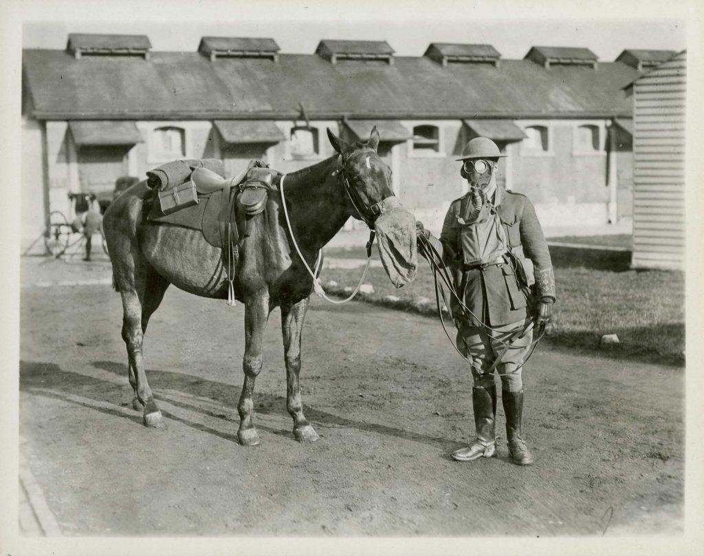 Un homme en uniforme portant un masque à gaz tient la tête d'un cheval, lui aussi protégé par un tel masque.